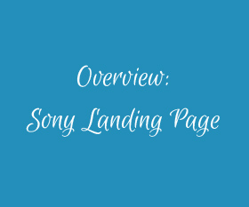 About the Creation of Sony Pro-Media Landing Page